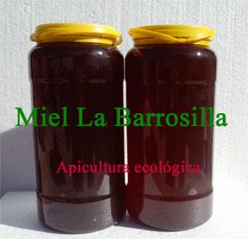 Miel ecológica de bosque a granel