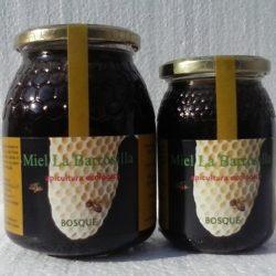 Miel de bosque BIO