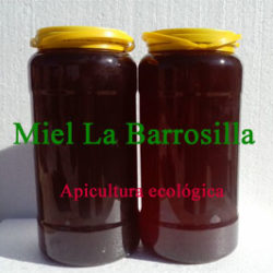 Miel ecológica multifloral a granel